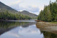 Alaska lakes. Beautiful view of South Alaska lakes Royalty Free Stock Photo