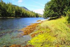 Alaska lakes. Beautiful and sunny of southern alaska lakes Royalty Free Stock Image
