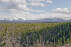 Alaska landscape Royalty Free Stock Photo