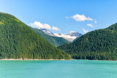 Alaska landscape with green forest, river moutains with the snow Stock Photos