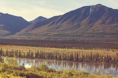 Alaska landscapes Stock Image