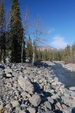 Alaska-Landschaft Lizenzfreie Stockfotografie