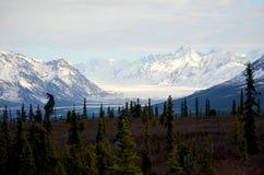 Alaska lodowiec obrazy royalty free