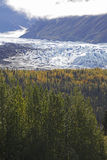 Alaska Mantanuska glacier in autumn Royalty Free Stock Images