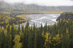 Alaska Matanuska Valley River Fall Trees Royalty Free Stock Photography