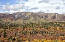 Alaska mountain landscape Royalty Free Stock Image
