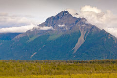 Alaska mountain. Landscape view of Alaska mountain with trees in the foreground Stock Photo