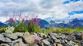 Alaska Mountain Ranges. View of the Alaska mountain ranges from Seward Highway near the town of Hope royalty free stock image