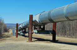 Alaska Oil Pipeline Stock Photos