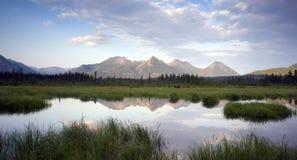 Alaska Outdoors Wrangell-Saint Elas Background Stock Images