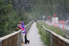 Alaska outdoors Royalty Free Stock Image