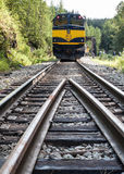Alaska Railroad train tracks. View from the tracks on the Alaska Railroad which allows riders to signal for stops upon request anywhere along the tracks. Great stock image
