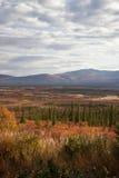 Alaska Range in Denali Royalty Free Stock Images
