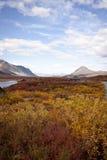 Alaska Range in Denali Stock Image