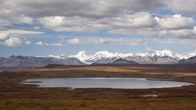 Alaska Range in Denali. Fall Foliage along the Denali highway in Alaska Stock Photography