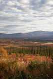 Alaska Range in Denali Royalty Free Stock Image