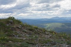 Alaska ridges. Sparse vetegation covers a ridge with many more ridges fading into the distance showing the landscape north of Fairbanks Alaska Royalty Free Stock Images