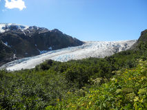 Alaska roadtrip Royalty-vrije Stock Afbeelding