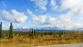 Alaska roadtrip Stockbild