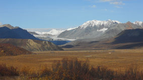Alaska Roadtrip Royalty Free Stock Image