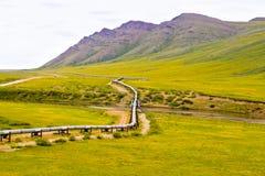Alaska-Rohrleitung lizenzfreies stockfoto