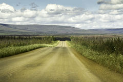 Alaska rosd från Fairbanks till norra polcirkeln Royaltyfri Bild