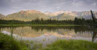 Marsh Reflection Amidst Mountains Route 1 Alaska Stock Photography