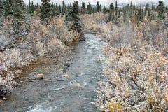 alaska rzeka Obrazy Royalty Free