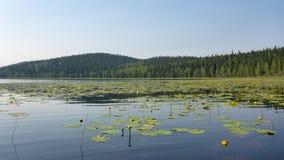 Alaska's失去的湖 免版税库存图片
