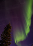 Alaska's Aurora Royalty Free Stock Photography