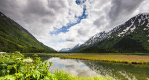 Alaska`s Chugach National Forest Royalty Free Stock Image