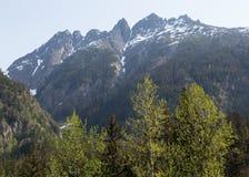 Alaska's Denver Valley Royalty Free Stock Photo