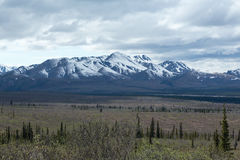 Alaska's Fields and Mountains Stock Images