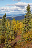 Alaska's Forests in Fall Stock Photos