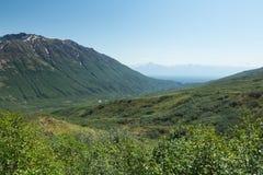 Alaska's Hills and Mountains Stock Image