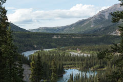 Alaska's Horseshoe Lake and Nenana River Royalty Free Stock Photo