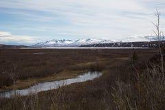 Alaska's Wilderness Royalty Free Stock Image