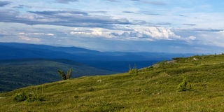 Alaska's Wilderness Royalty Free Stock Images