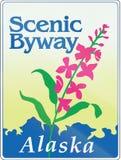 Alaska Sceniczny Byway Obrazy Stock