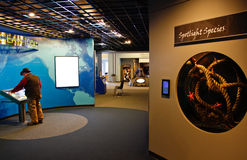 Alaska Sea Life Center 2nd Floor Displays Stock Photos