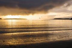 Alaska solnedgång Arkivbilder
