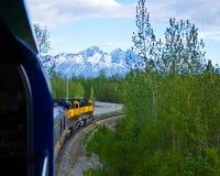 Alaska by Train Royalty Free Stock Photography
