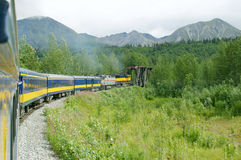 Alaska Train Ride 2. A Train Ride through the woods and mountians of Alaska Royalty Free Stock Photography