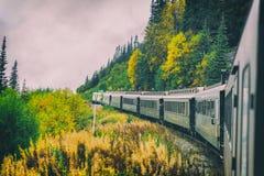 Free Alaska Train White Pass Yukon Route Railroad Railway Ride On Old Transport Rails In Alaskan Fall Autumn Landscape, USA Stock Image - 194150131