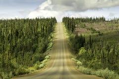 Alaska väg från Fairbanks till norra polcirkeln Arkivfoto