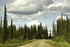 Alaska väg från Fairbanks till norra polcirkeln Royaltyfria Foton