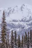 Alaska w wiośnie Obrazy Royalty Free