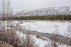 Alaska w wiośnie Fotografia Stock