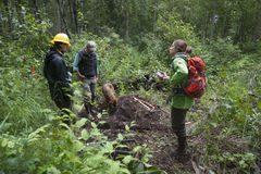 Alaska Wilderness Trail Construction. Alaska Department of Fish and Game Refuge Manager Doug Hill oversees volunteers during Alaska Wetlands Wilderness Trail Royalty Free Stock Photos