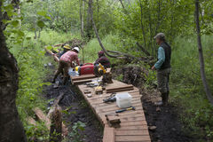 Alaska Wilderness Trail Construction. Alaska Department of Fish and Game Refuge Manager Doug Hill oversees volunteers during Alaska Wetlands Wilderness Trail Stock Photos